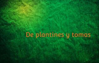 De plantines y tomas